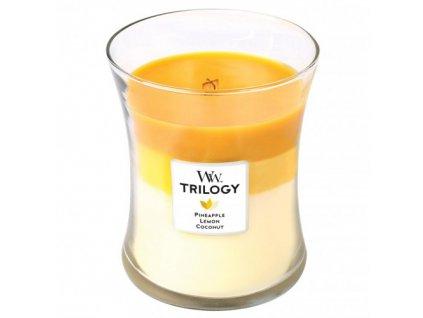 Svíčka Trilogy WoodWick letní ovoce Ananas 275 g