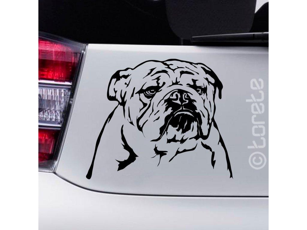 Englische Bulldogge Aufkleber