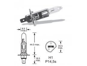 12V H1 55W P14,5s