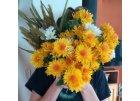 umelohmotné dekorácie - kvety, zeleň