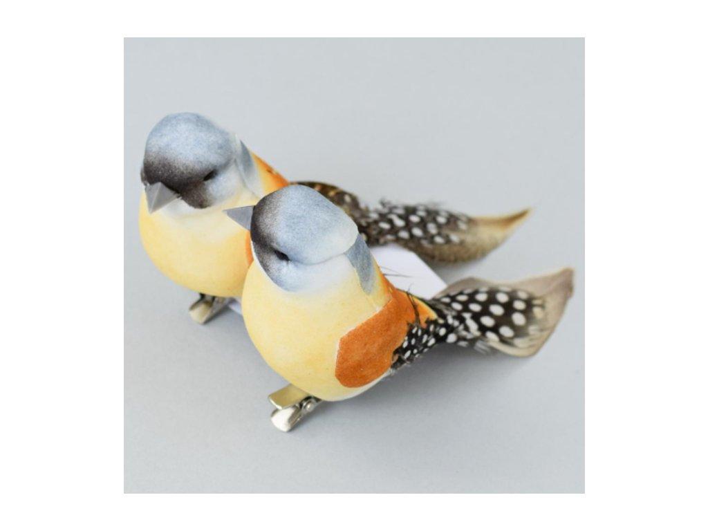 vtáčik so štipcom hnedý