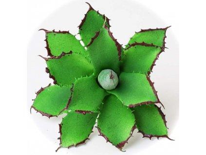 92065 kaktus 10cm zapich