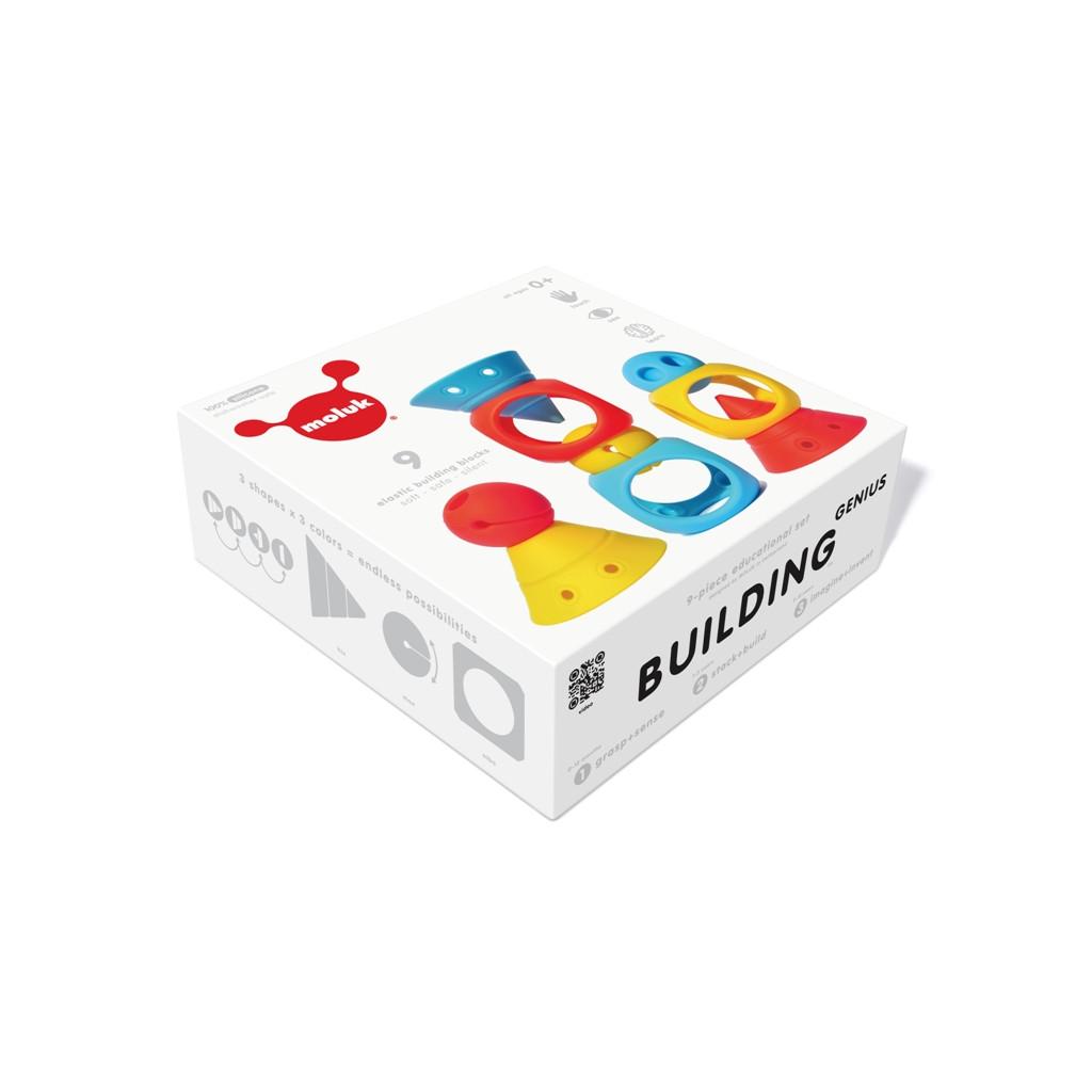 BUILDING GENIUS 01