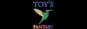 Toy Fantasy