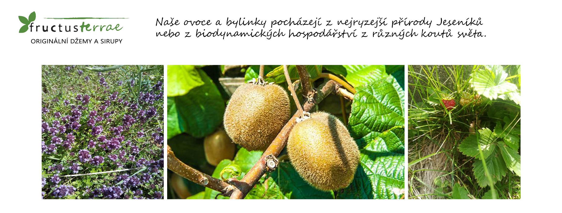 Naše ovoce a bylinky pocházejí z nejryzejší přírody Jeseníků nebo z biodynamických hospodářství z různých koutů světa.