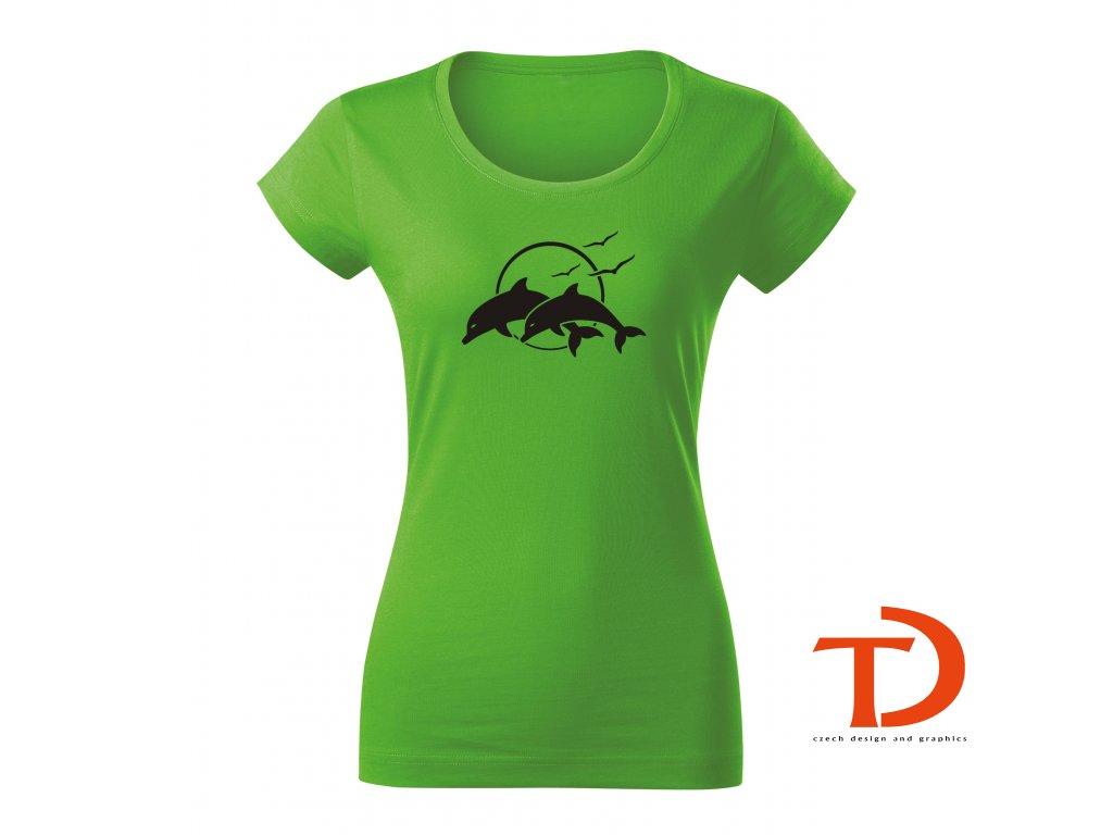 Delfini1 D Ag