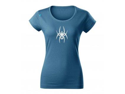 Pavouk1 D De