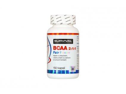BCAA 211 900x600 1 900x600