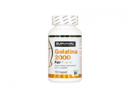Gelatina 2000 Fair Power 900x600 01 900x600