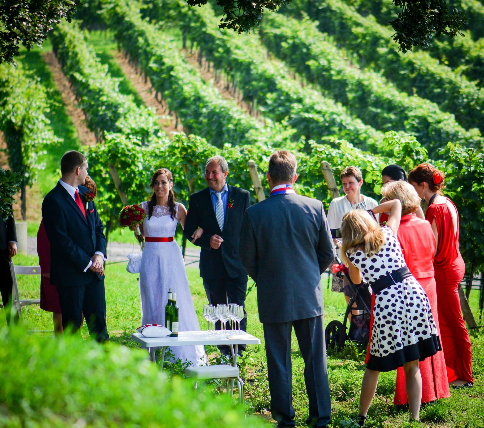 Svatby U tří dubů