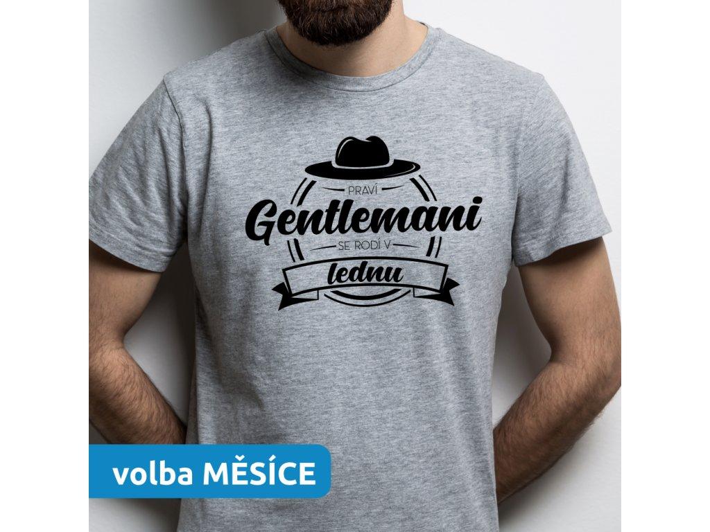 Pánské tričko pro tátu dědu strejdu Pravý Gentlemani se rodí v LEDNU šedé