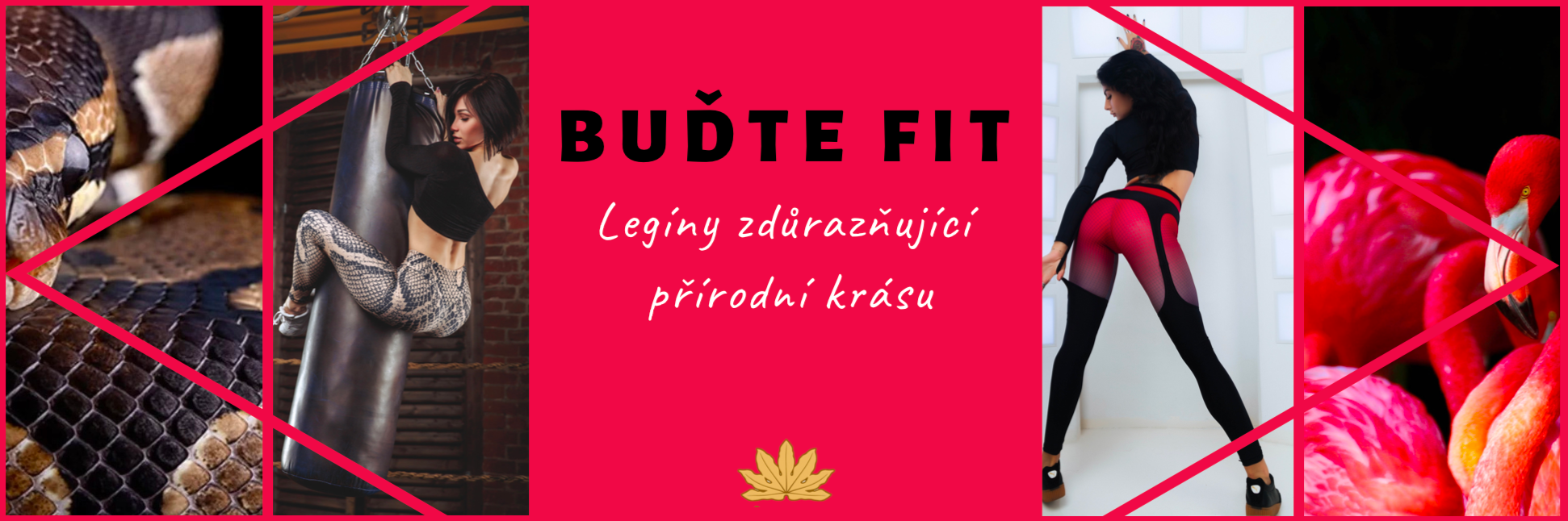 Budte Fit