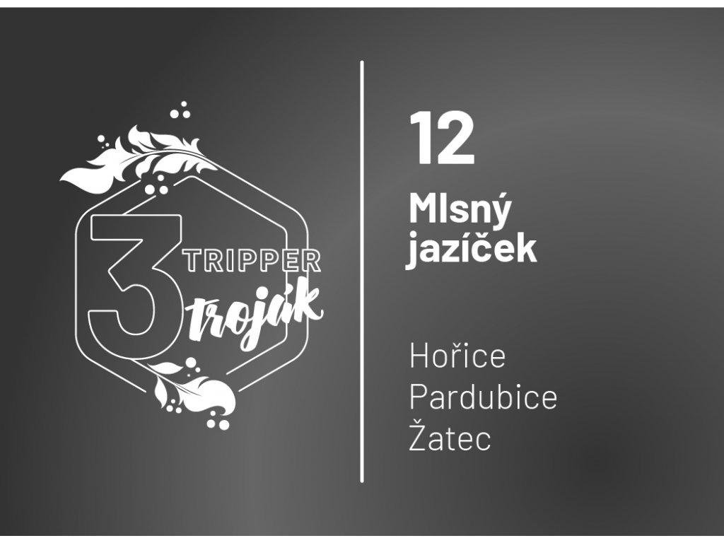 T3 12