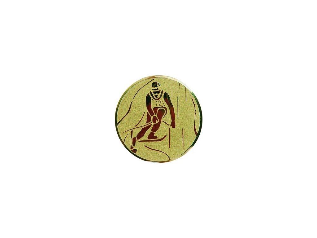 Emblém 25mm  72 lyžovanie zjazd