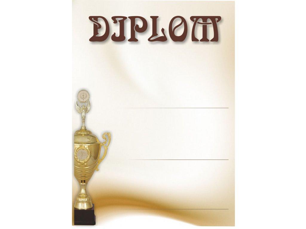 Diplom 7