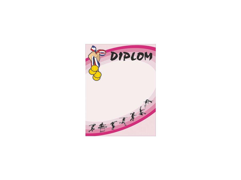 Diplom 27