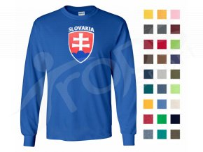 Slovensko DR 4