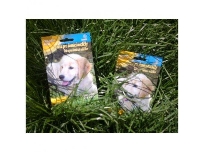 Tráva pro psy
