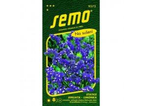 Statice limonka Blue fialová