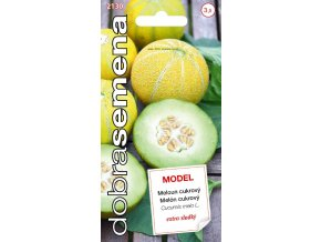Meloun cukrový MODEL