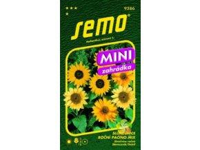 Slunečnice roční PACINO MIX