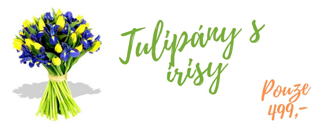 Tulipány s irisy