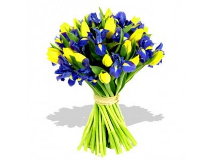 863 purple iris yellow tulips bouquet 500x500
