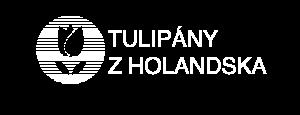 Tulipány z Holandska