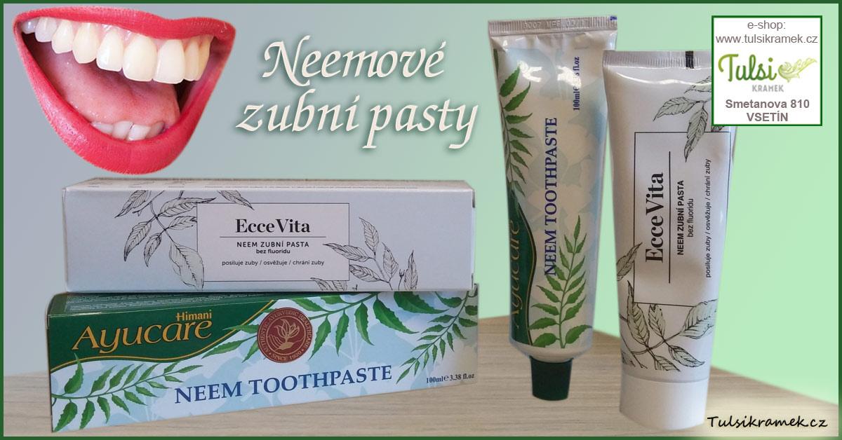 Neemové zubní pasty