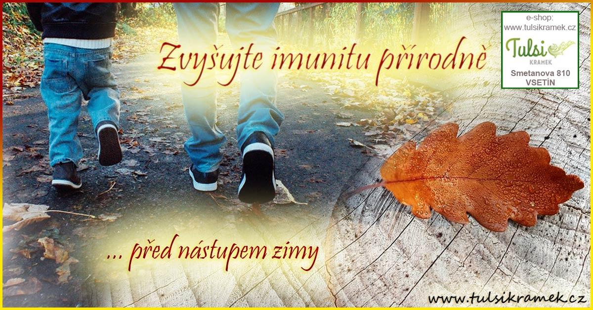 Posilujte imunitu jednoduše - bylinami z přírody