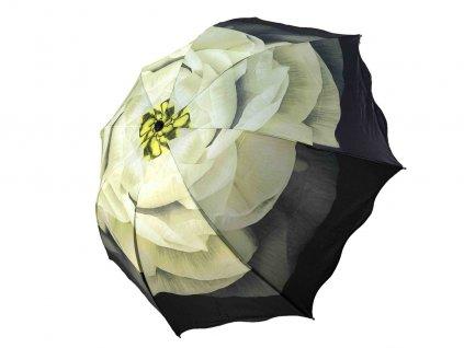 zltozeleny kvet zboku