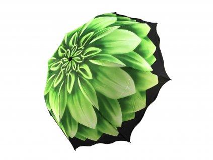 zeleny kvet zboku