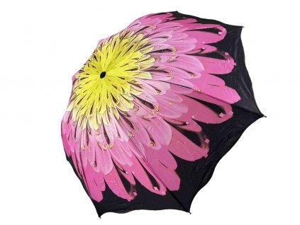ruzovozlty kvet otvoreny