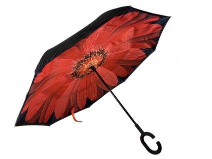 cerveny kvet 2