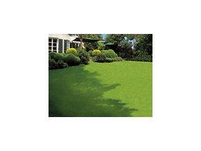 Eurogreen Rasana SPORT -500 m2-travní osivo