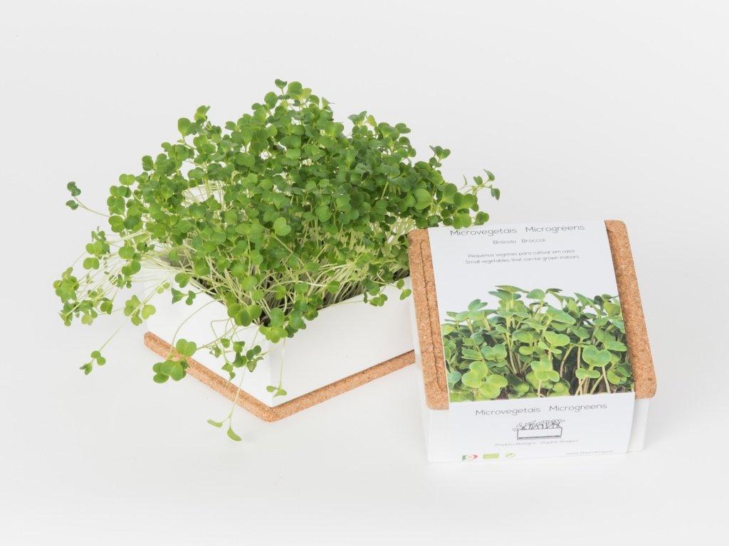 uno broccoli 3