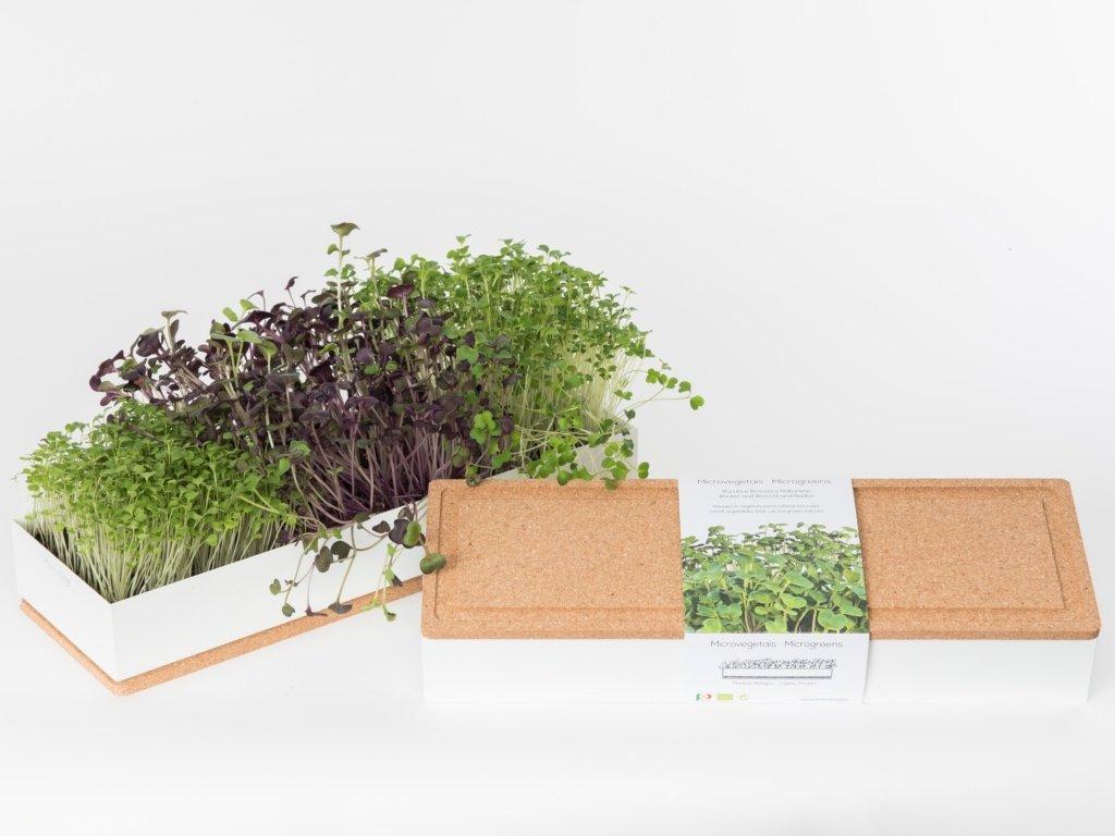 Grow Box Trio