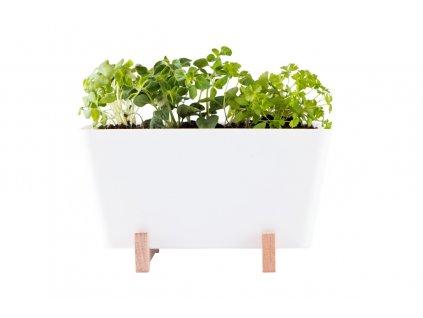 """WaterWick - samozavlažovací mini truhlík """"Plant Box"""""""