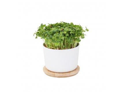 grow jar