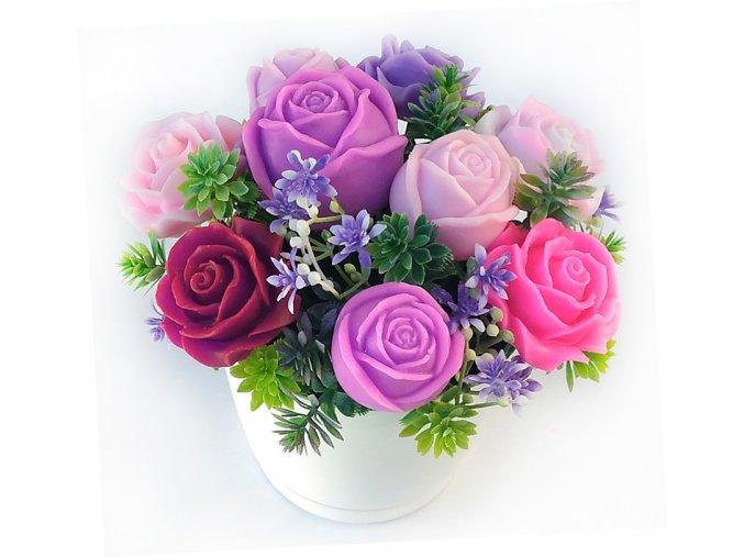 fialove ruze5
