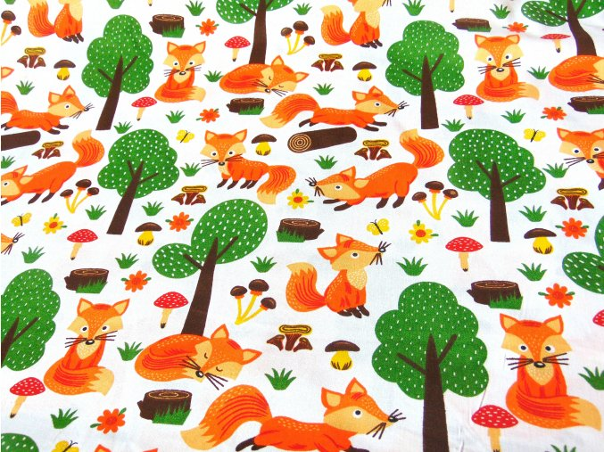 Plátno Lišky