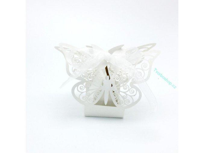 Krabička s motýly