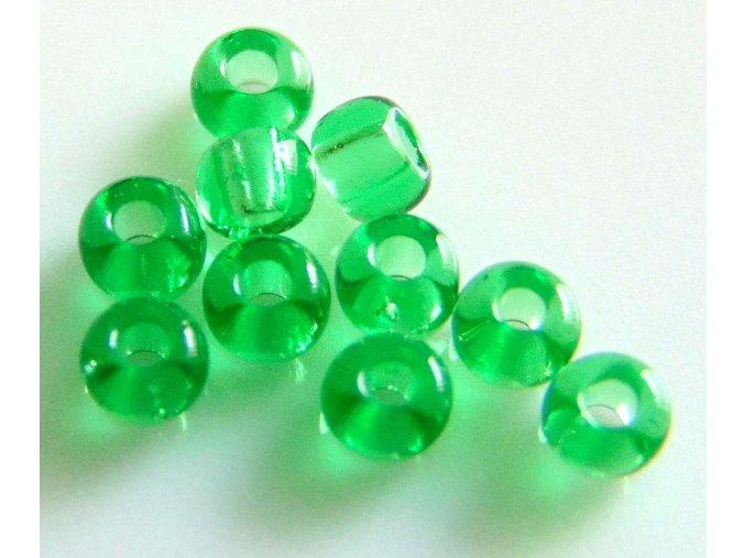Zelená transparentní 110