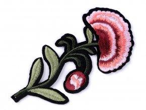 Nažehlovačka růže