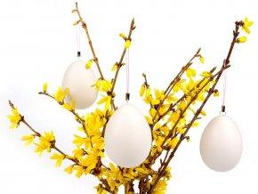 Plastové vejce 46x64 mm se závěsem