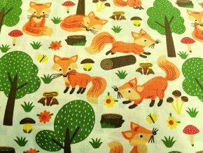 lišky na smetanové