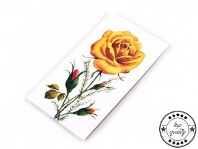 Jehly mapky růže Galant