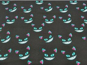 Zimní softshell Kočky na černé