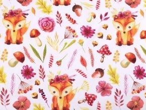 Plátno lišky holčičí