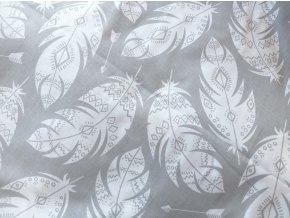 Plátno Bílá indiánská peříčka na šedé